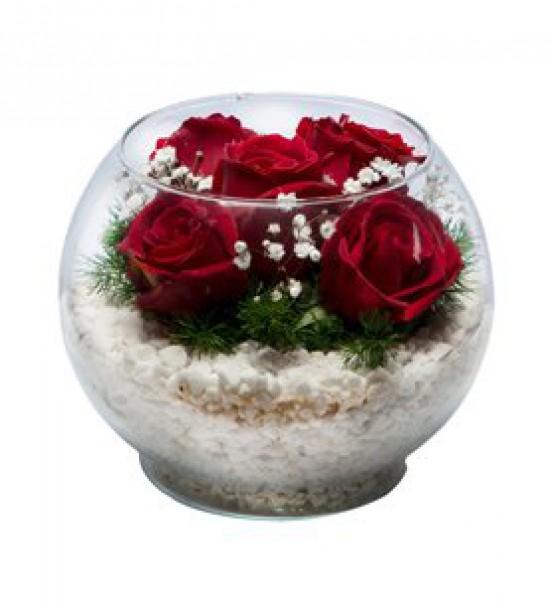 Elazığ Çiçek 24