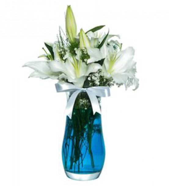 Elazığ Çiçek 28