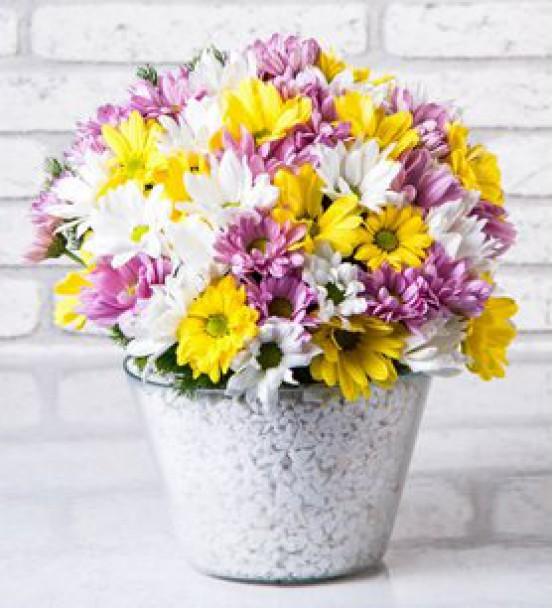 Elazığ Çiçek 36