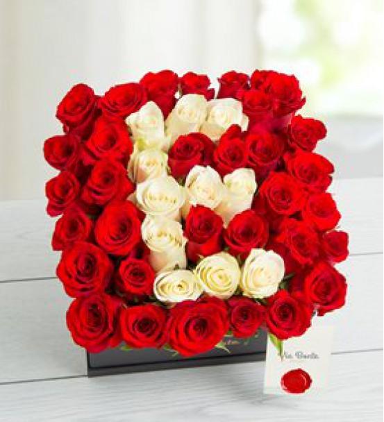 Elazığ Çiçek 39