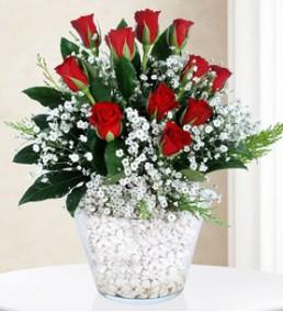 Elazığ Çiçek 62
